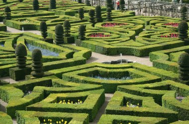 Garden from Chateau de Villandry, France