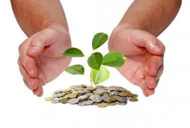Invest money concept