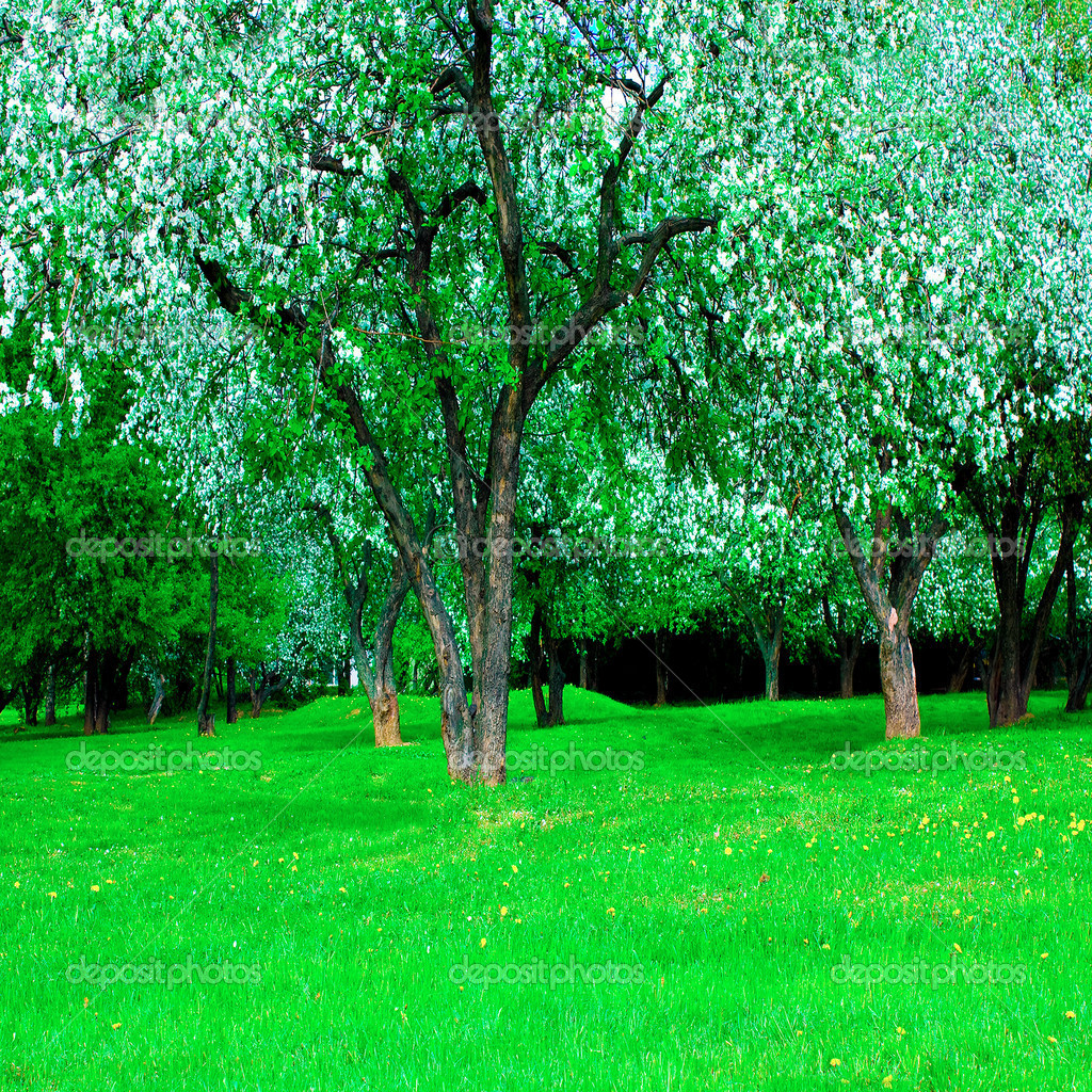 Blooming green Beautiful park garden