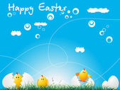 Húsvéti csirke alatt kék háttér
