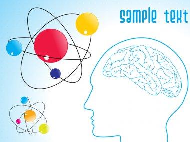 Human brain, atomic structure