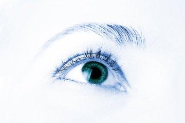 Macro of beautiful human eye