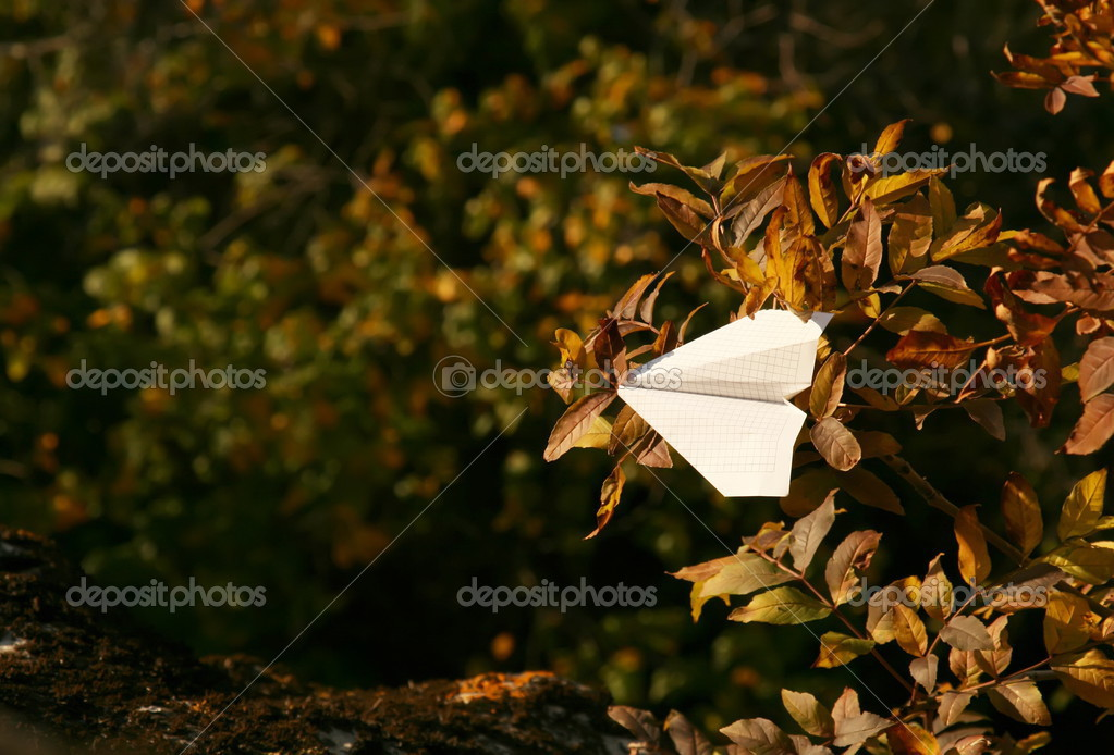Paper plane in branches