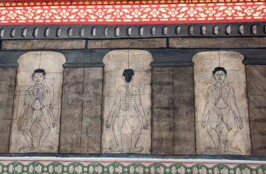 Ancient thai massage diagram