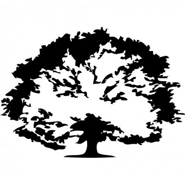 Trees.Vector image