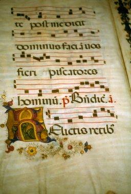 Illuminated manuscript,
