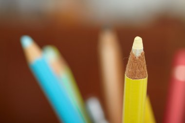 Education - sharpened colourful pencil