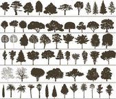 vektor stromy
