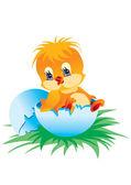 novorozené kuře