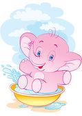 čistě slon