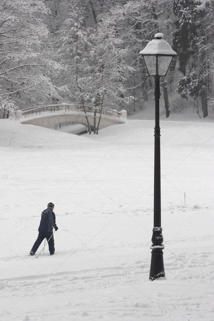 Walk of the skier on winter beauty