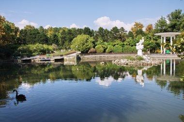 Pond in the park Arboretum
