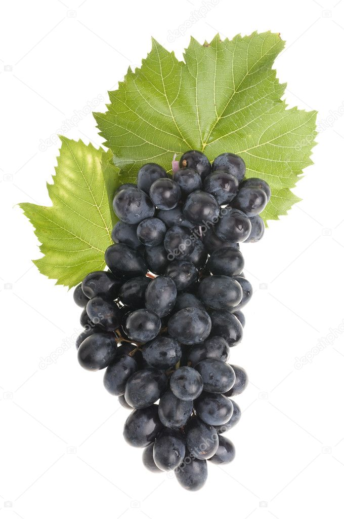 Grape food over white