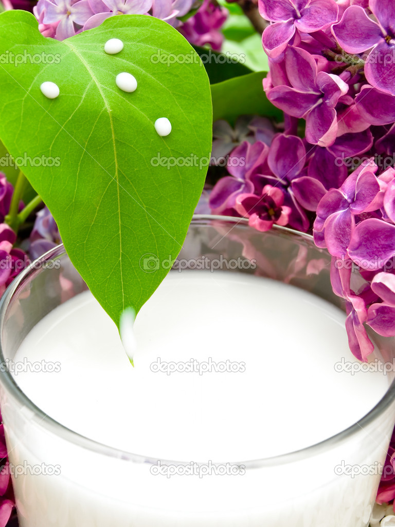 Milk and lilac
