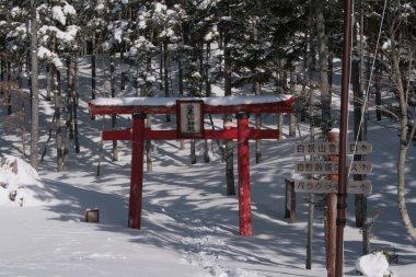 The way to shrine