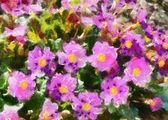 Ilustrace, fialové květy