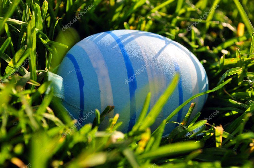Easter egg in spring grass
