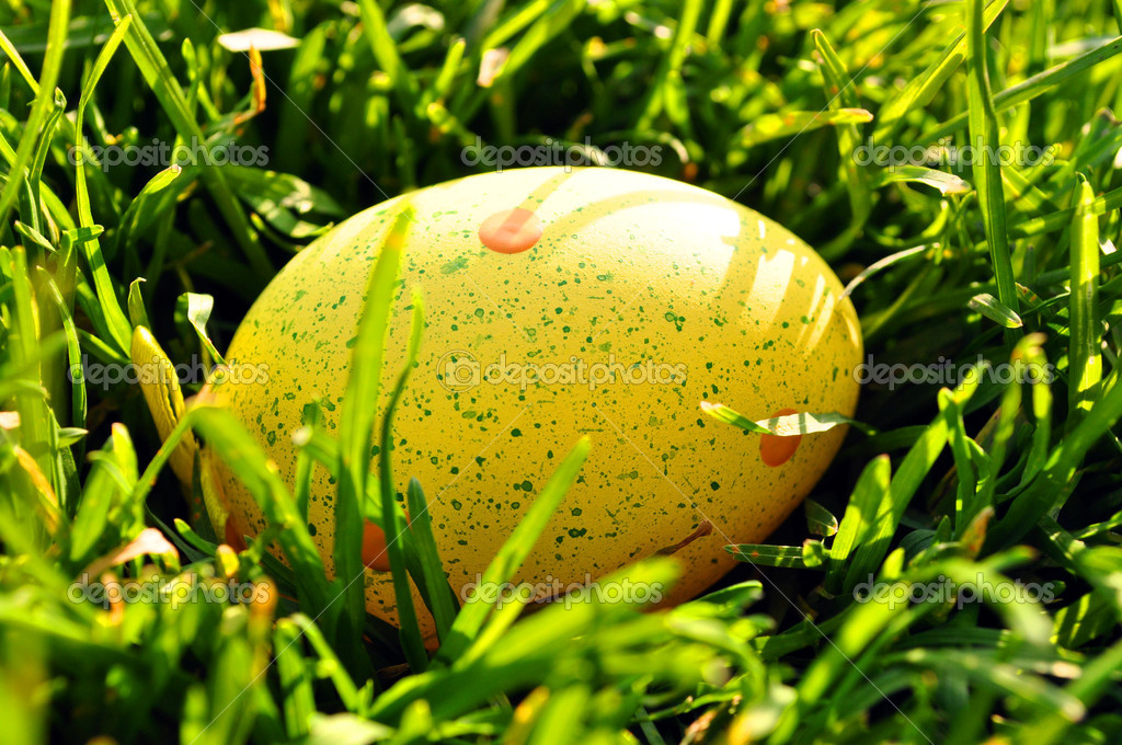 Yellow Easter egg in spring grass