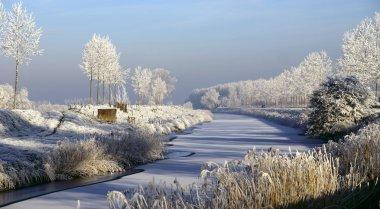 Gorgeous winter landscape