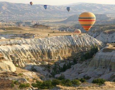 Hot air balloons above a gorgeous lands