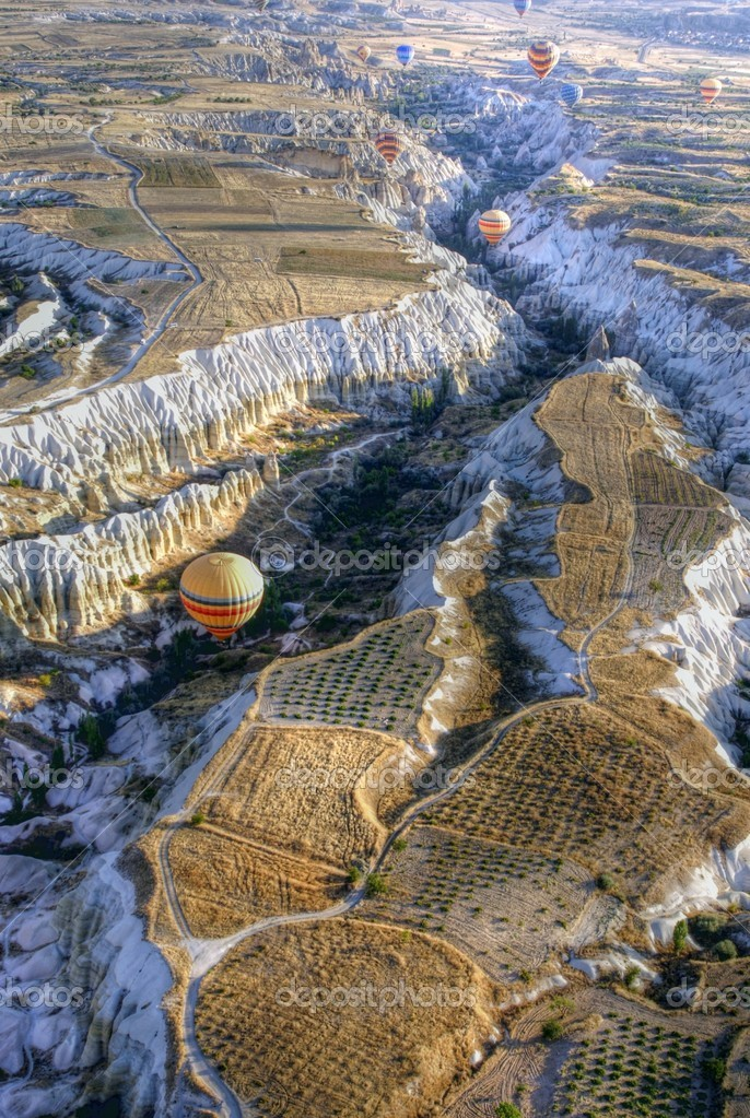 Hot air balloons above a gorgeous lands