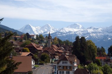 Traditional swiss village view