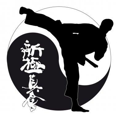 KARATE SHINKYOKUSHINKAI, shinkyokushin fighter