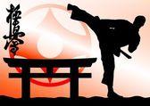 harcművészetek - karate kyokushinkai