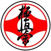 Fényképek harcművészetek - karate kyokushinkai