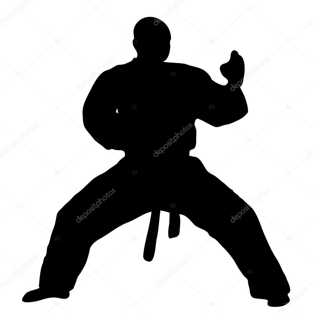 martial arts differences karate versus taekwondo Trying to decide between taekwondo or karate for your child here are the basic differences between these two martial art styles.