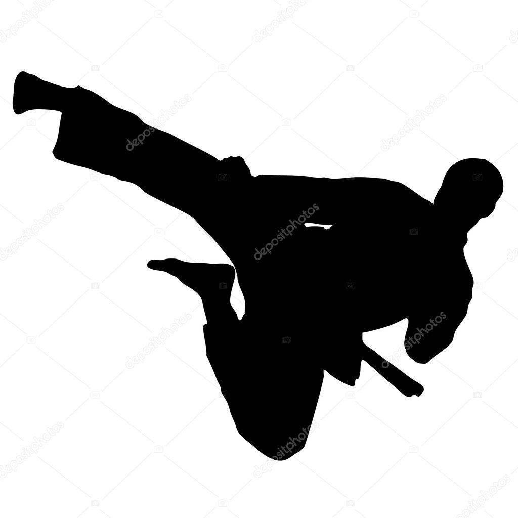 MARTIAL ART - KARATE jump kick VECTOR
