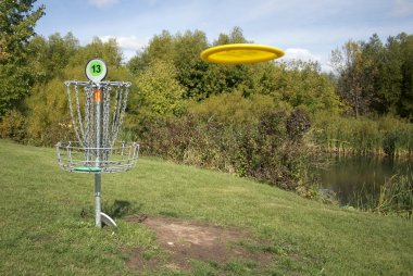 Frisbee Golf Target with Disc