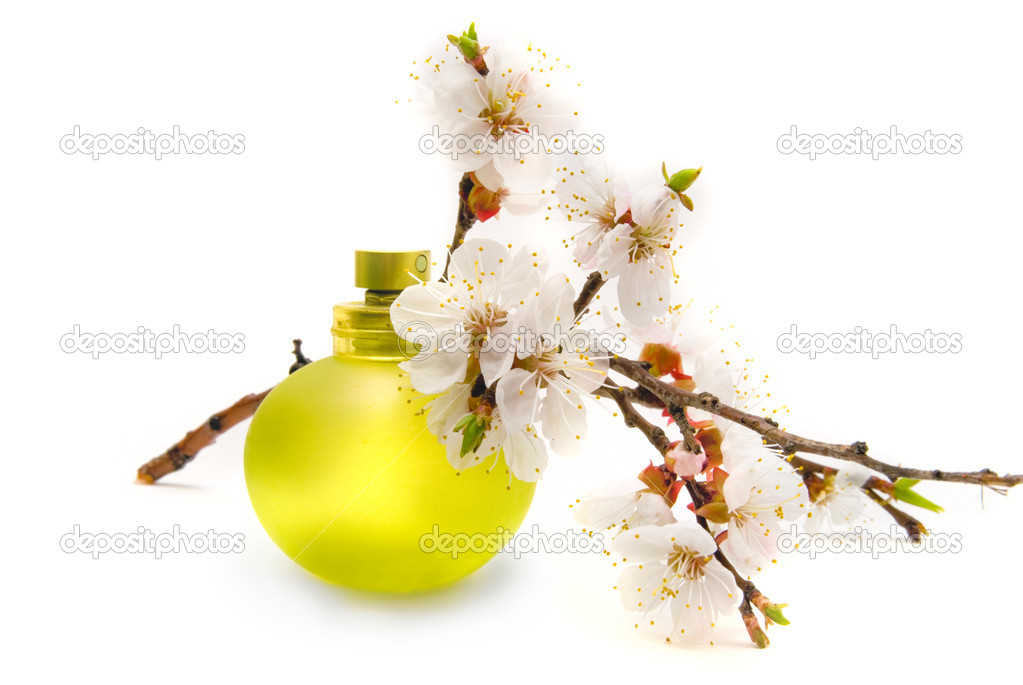 Bottle of perfume and spring flowers