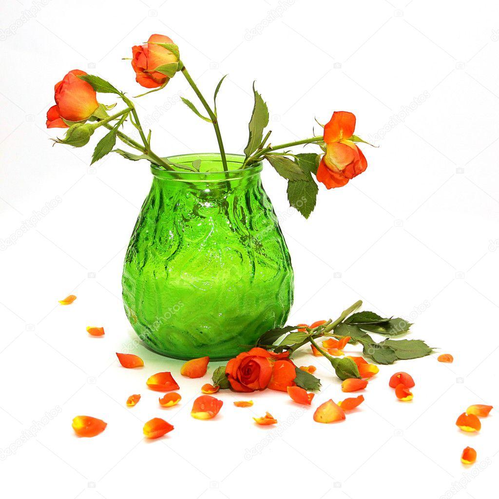 Delicate orange roses in a green vase
