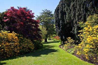 Glorious English Garden