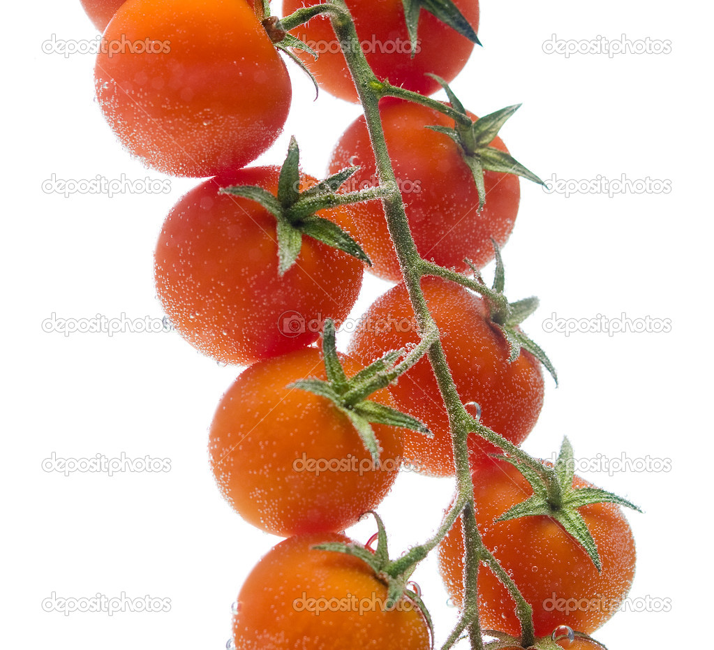 Bunch tomato