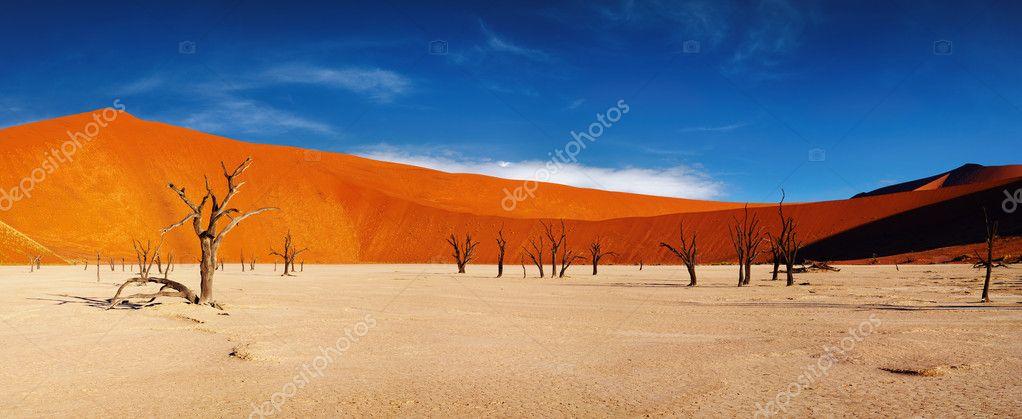 desert-namibe