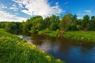"""Картина, постер, плакат, фотообои """"зеленое поле возле реки """", артикул 1605471"""