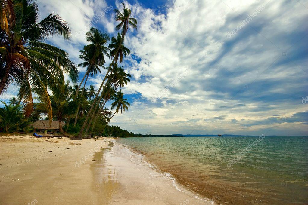 On the tropical beach