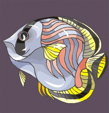 Beautiful Fish Vector On Background