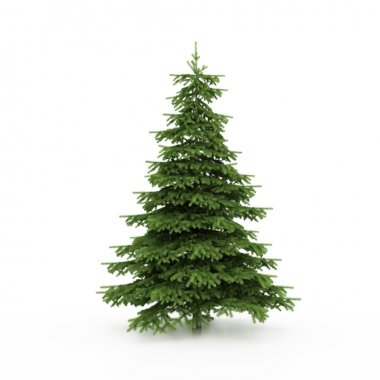 The Christmas tree ready to decorate stock vector