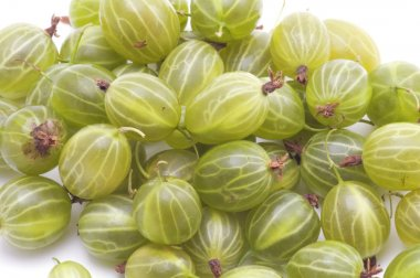 Gooseberries closeup