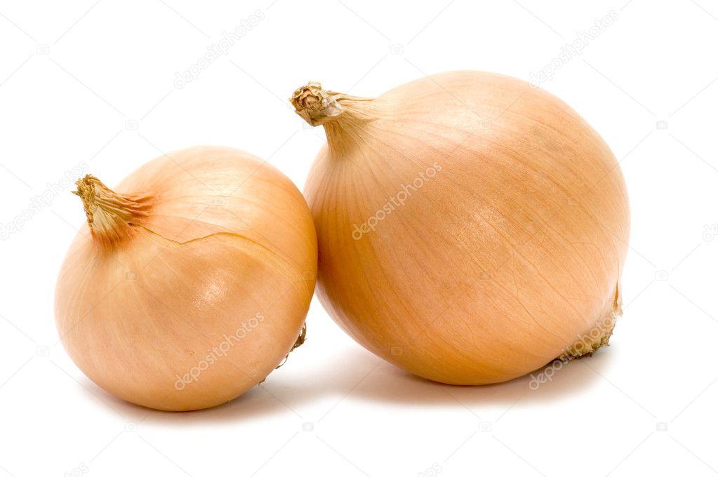 Two bulb onion
