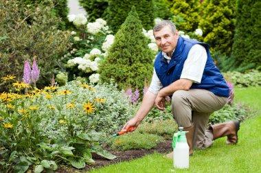 Man raking garden stock vector
