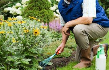 Man working in the garden stock vector