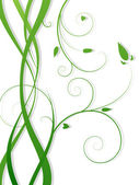 Fényképek zöld virágos háttér