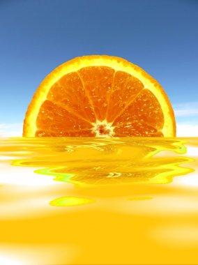 Orange in juice