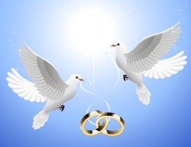 White_doves_holding_wedding_rings