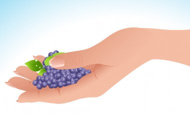 Berry in the hand