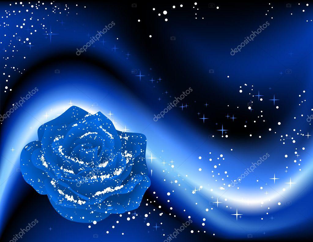Winter rose